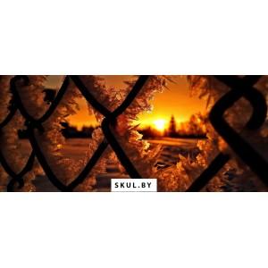 Заборы из сетки рабица в Бобруйске
