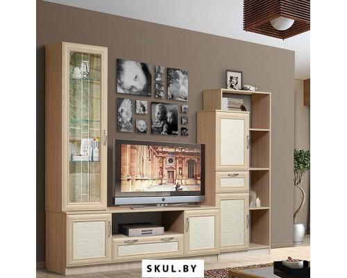 Наборы корпусной мебели для гостиной в Осиповичах